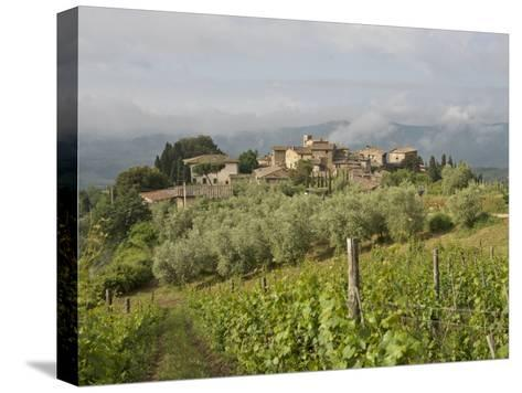 Wine Fields and Olive Groves in Foreground-Keenpress-Stretched Canvas Print