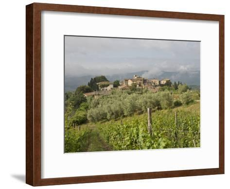 Wine Fields and Olive Groves in Foreground-Keenpress-Framed Art Print