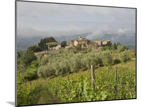 Wine Fields and Olive Groves in Foreground-Keenpress-Mounted Photographic Print