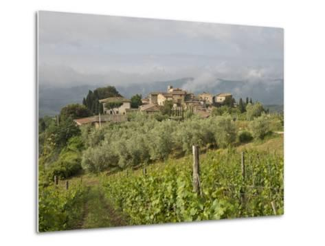 Wine Fields and Olive Groves in Foreground-Keenpress-Metal Print