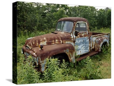 Abandoned Truck Rests in a Patch of Overgrown Grasses and Bushes-Paul Damien-Stretched Canvas Print