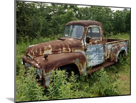 Abandoned Truck Rests in a Patch of Overgrown Grasses and Bushes-Paul Damien-Mounted Photographic Print