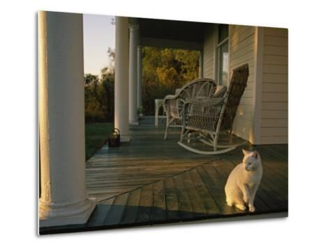White Cat in Sunlight on a Columned Porch of a Historic Farmhouse-Joel Sartore-Metal Print