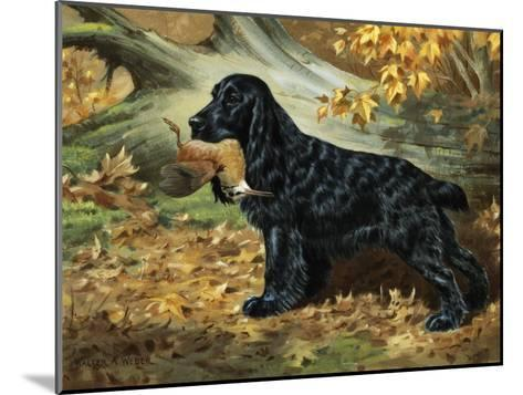Portrait of English Cocker Spaniel Holding a Bird in its Jaws-Walter Weber-Mounted Photographic Print