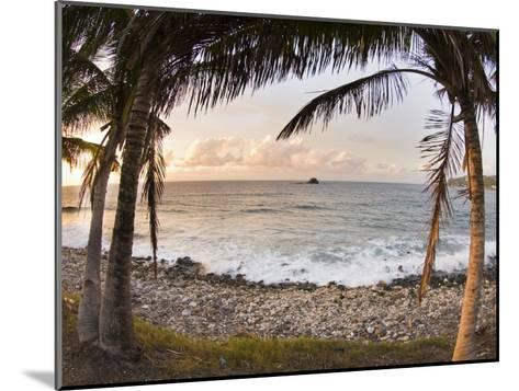 Sunset Framed by Palm Trees on a Rocky Beach-James Forte-Mounted Photographic Print