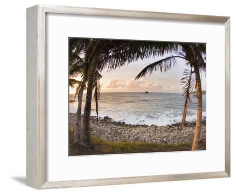 Sunset Framed by Palm Trees on a Rocky Beach-James Forte-Framed Art Print