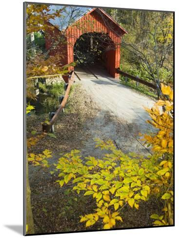 Slaughter House Bridge and Fall Colors-James Forte-Mounted Photographic Print
