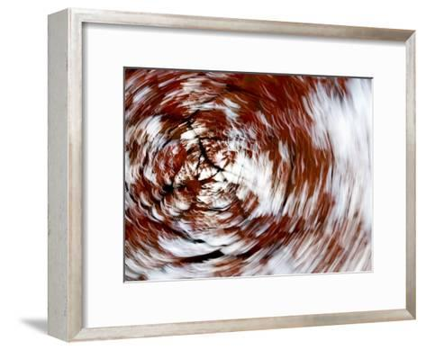 Spinning Abstract of a Red-Leafed Tree-Mattias Klum-Framed Art Print