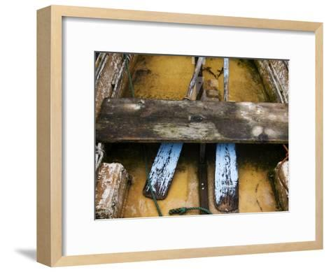 Close-up of Oars in a Flooded Rowboat-Todd Gipstein-Framed Art Print