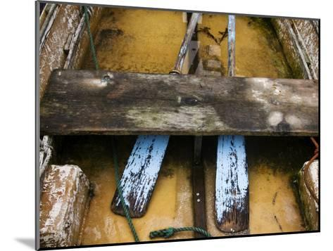 Close-up of Oars in a Flooded Rowboat-Todd Gipstein-Mounted Photographic Print