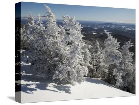 Summit View from the Top of Madonna Mountain, Vermont, with Rime Covered Trees-Tim Laman-Stretched Canvas Print