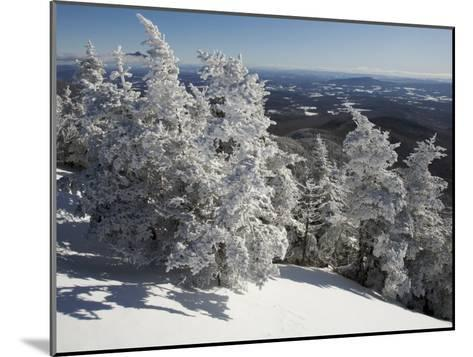 Summit View from the Top of Madonna Mountain, Vermont, with Rime Covered Trees-Tim Laman-Mounted Photographic Print
