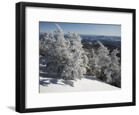 Summit View from the Top of Madonna Mountain, Vermont, with Rime Covered Trees-Tim Laman-Framed Art Print