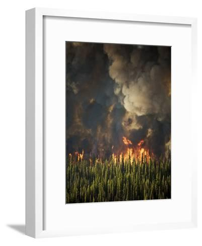 Aerial View of Forest Fires in the Boise National Forest-Mark Thiessen-Framed Art Print