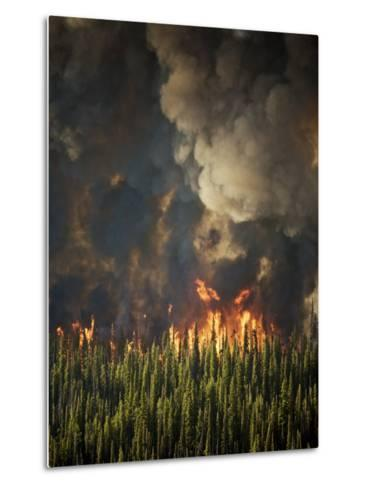 Aerial View of Forest Fires in the Boise National Forest-Mark Thiessen-Metal Print