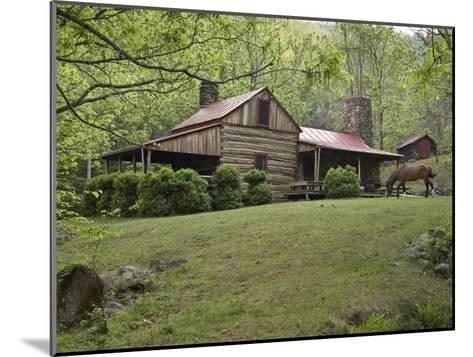 Horse Grazing in the Yard of a Mountain Log Cabin-Greg Dale-Mounted Photographic Print