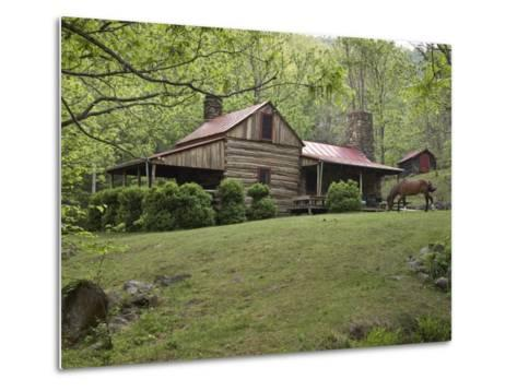 Horse Grazing in the Yard of a Mountain Log Cabin-Greg Dale-Metal Print