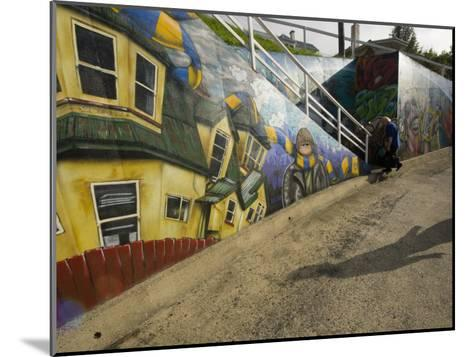City Sponsored and Approved Graffiti on a Walkway in Residential Area-Bill Hatcher-Mounted Photographic Print