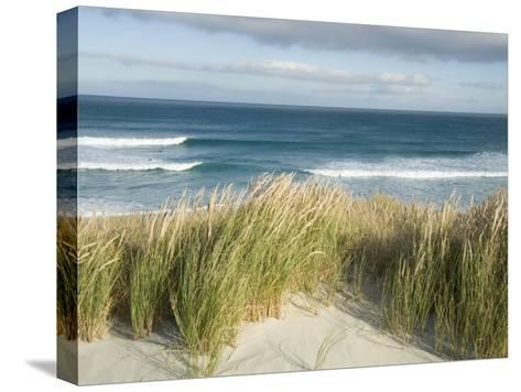 Scenic Hillside of the Beach and Grasses on the Pacific Ocean-Bill Hatcher-Stretched Canvas Print