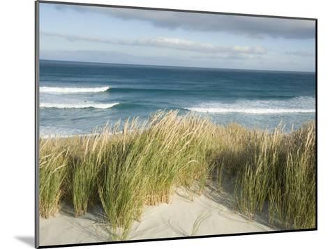 Scenic Hillside of the Beach and Grasses on the Pacific Ocean-Bill Hatcher-Mounted Photographic Print