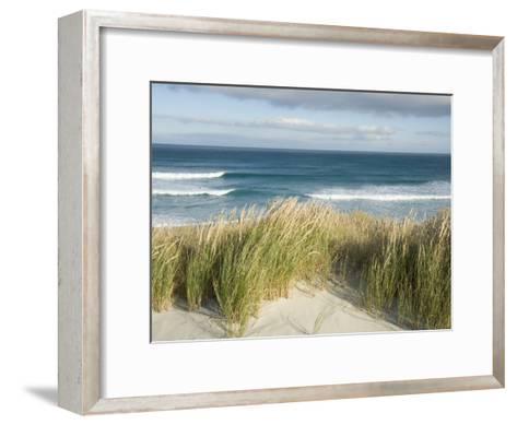 Scenic Hillside of the Beach and Grasses on the Pacific Ocean-Bill Hatcher-Framed Art Print