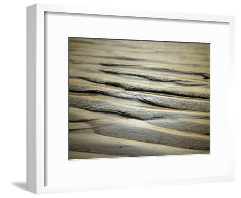 Last Rays of the Setting Sun Catches Sand Ripples on a Tidal Flat-Jason Edwards-Framed Art Print