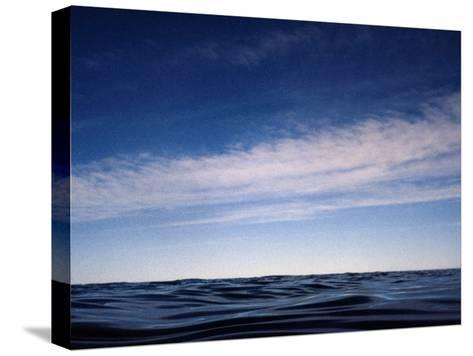 Fishes View of an Inky Pacific Ocean Surface on a Calm Day-Jason Edwards-Stretched Canvas Print