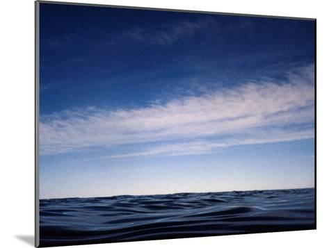Fishes View of an Inky Pacific Ocean Surface on a Calm Day-Jason Edwards-Mounted Photographic Print