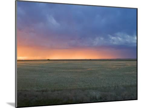 Colorful Sunset Illuminates the Sky over a Wheat Field in Colorado-Mike Theiss-Mounted Photographic Print