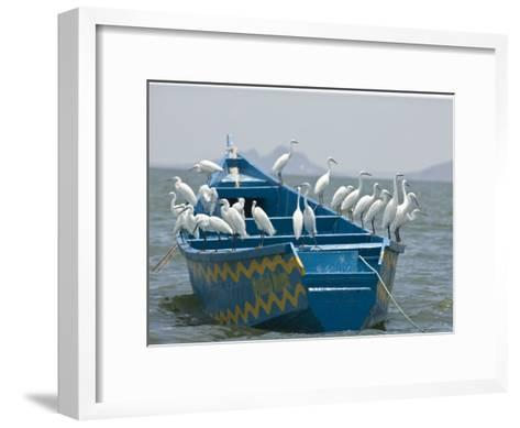 Egrets on a Blue Boat with a Yellow Pattern-Michael Polzia-Framed Art Print