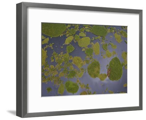 Vegetation Floating on Lake Wamala and Reflections of a Cloudy Sky-Michael Polzia-Framed Art Print