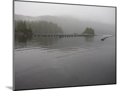 Oyster Farm in a Calm Inlet of Clayoquot Sound-Taylor S^ Kennedy-Mounted Photographic Print