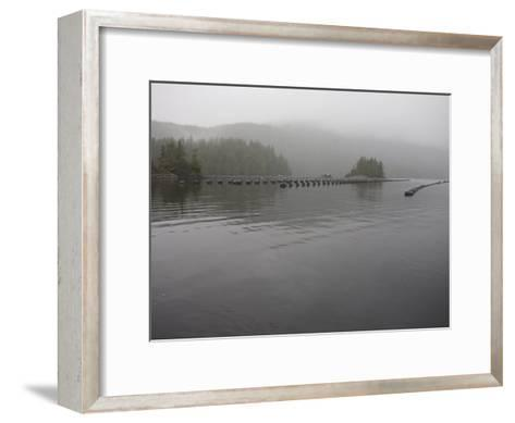 Oyster Farm in a Calm Inlet of Clayoquot Sound-Taylor S^ Kennedy-Framed Art Print