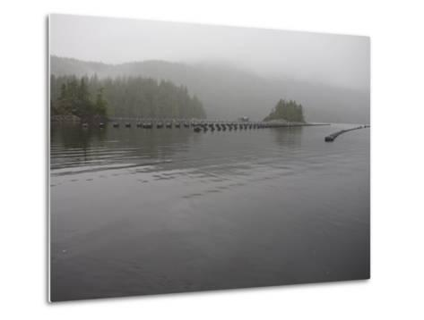 Oyster Farm in a Calm Inlet of Clayoquot Sound-Taylor S^ Kennedy-Metal Print