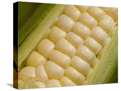 Close View of Corn-Taylor S^ Kennedy-Stretched Canvas Print