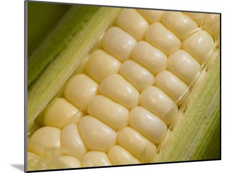 Close View of Corn-Taylor S^ Kennedy-Mounted Photographic Print