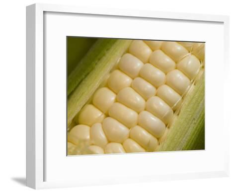 Close View of Corn-Taylor S^ Kennedy-Framed Art Print