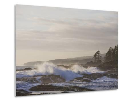 Stormy Day on Vancouver Island's West Coast-Taylor S^ Kennedy-Metal Print