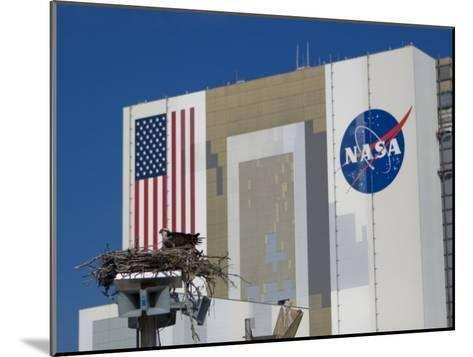 Osprey's Nest at the Vehicle Assembly Building at Kennedy Space Center-Mike Theiss-Mounted Photographic Print