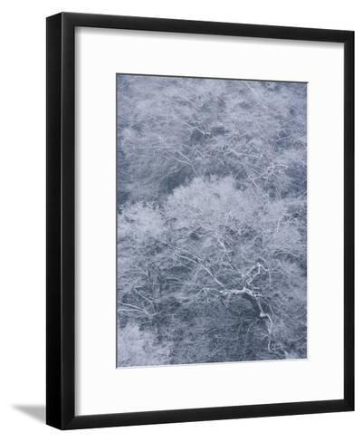 January Storm Covers Newfound Gap with Snow-Michael Melford-Framed Art Print