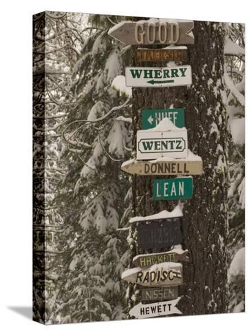 Cabin Owner Signs on a Tree in Winter in the Forest-Phil Schermeister-Stretched Canvas Print