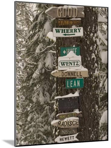 Cabin Owner Signs on a Tree in Winter in the Forest-Phil Schermeister-Mounted Photographic Print