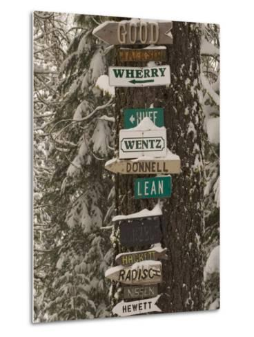 Cabin Owner Signs on a Tree in Winter in the Forest-Phil Schermeister-Metal Print