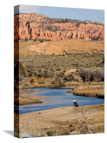 Desert Scene in Utah-Taylor S^ Kennedy-Stretched Canvas Print
