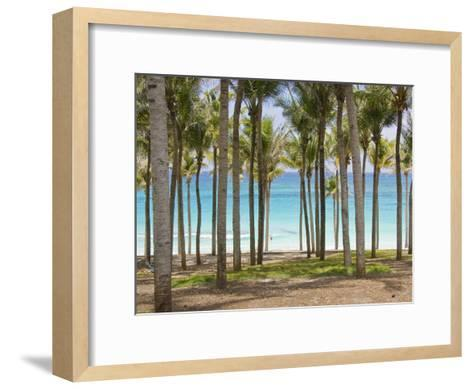 Rows of Palm Trees Line a Tropical Beach in Cancun, Mexico-Mike Theiss-Framed Art Print
