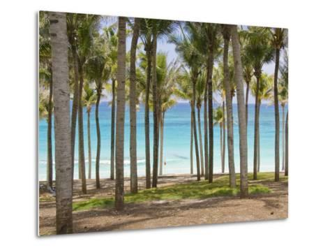 Rows of Palm Trees Line a Tropical Beach in Cancun, Mexico-Mike Theiss-Metal Print