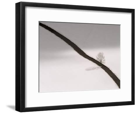 Winter Landscape with Danube River, Snow, and a Single Leafless Tree-Norbert Rosing-Framed Art Print