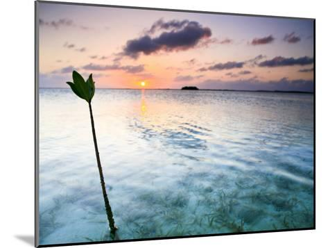 Sunset on the Flats of Acklins Island, Bahamas-Drew Rush-Mounted Photographic Print