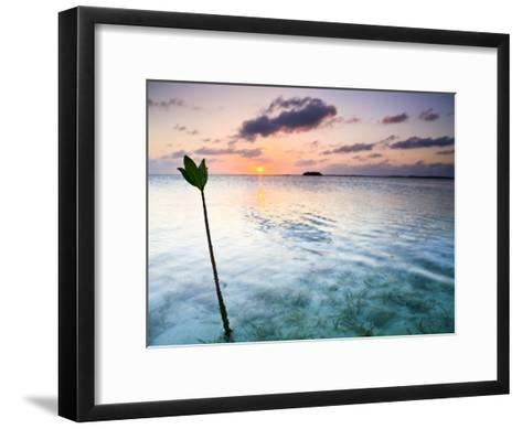 Sunset on the Flats of Acklins Island, Bahamas-Drew Rush-Framed Art Print