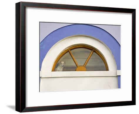 Dog Stands in a Window Above a Door Frame-Michael Melford-Framed Art Print